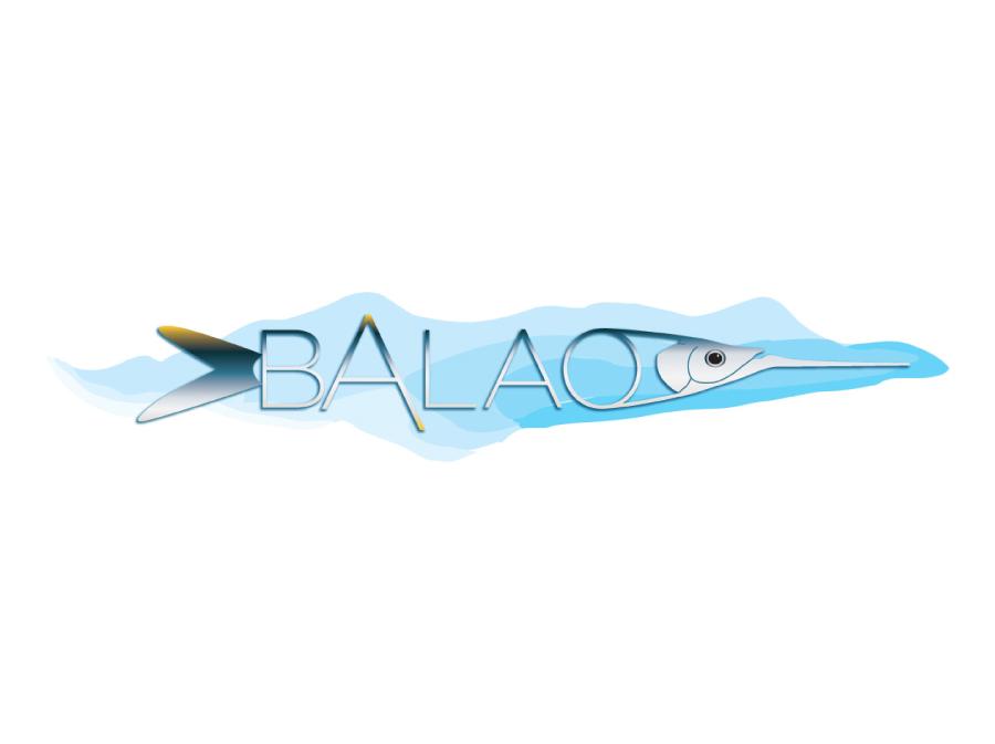Branding Balao