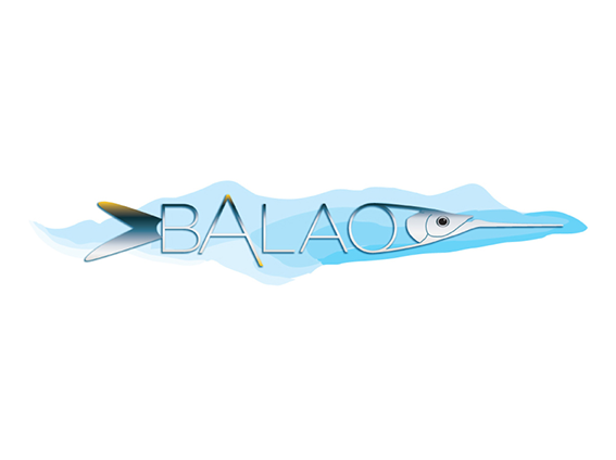 Diseño de branding para BALAO